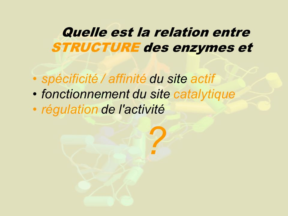 Quelle est la relation entre STRUCTURE des enzymes et