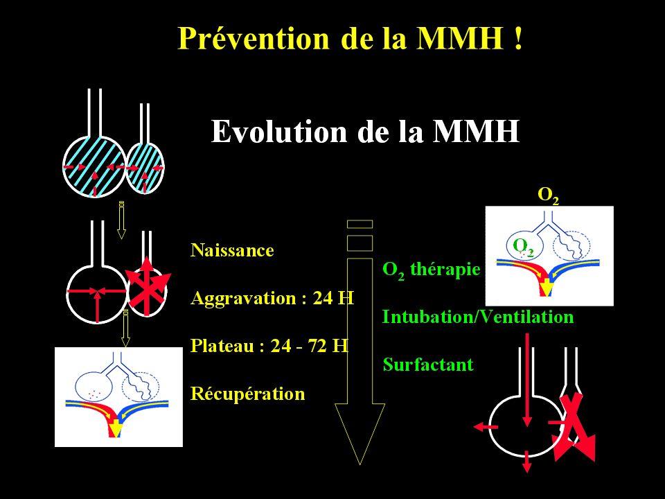 Prévention de la MMH !