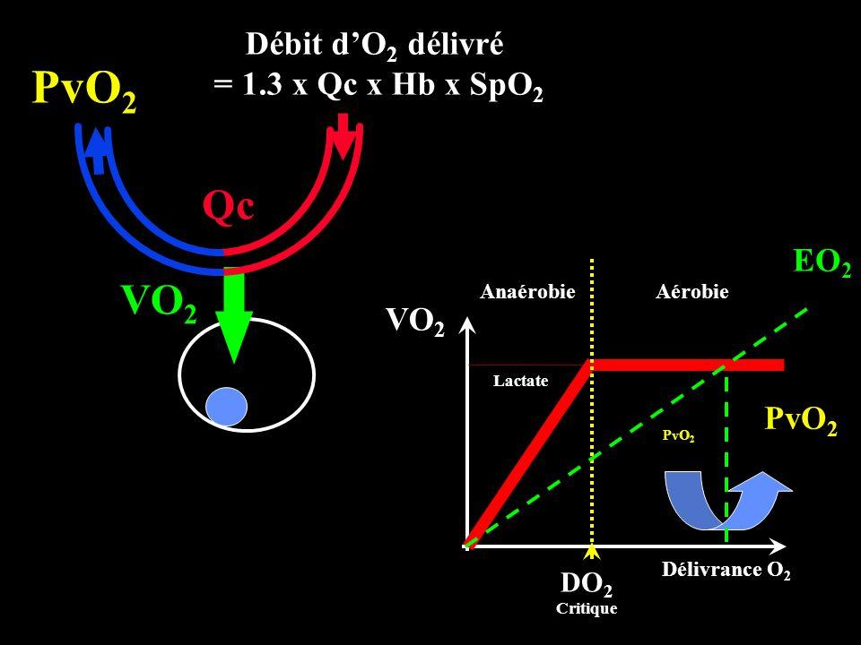 PvO2 Qc VO2 Débit d'O2 délivré = 1.3 x Qc x Hb x SpO2 EO2 VO2 PvO2 DO2