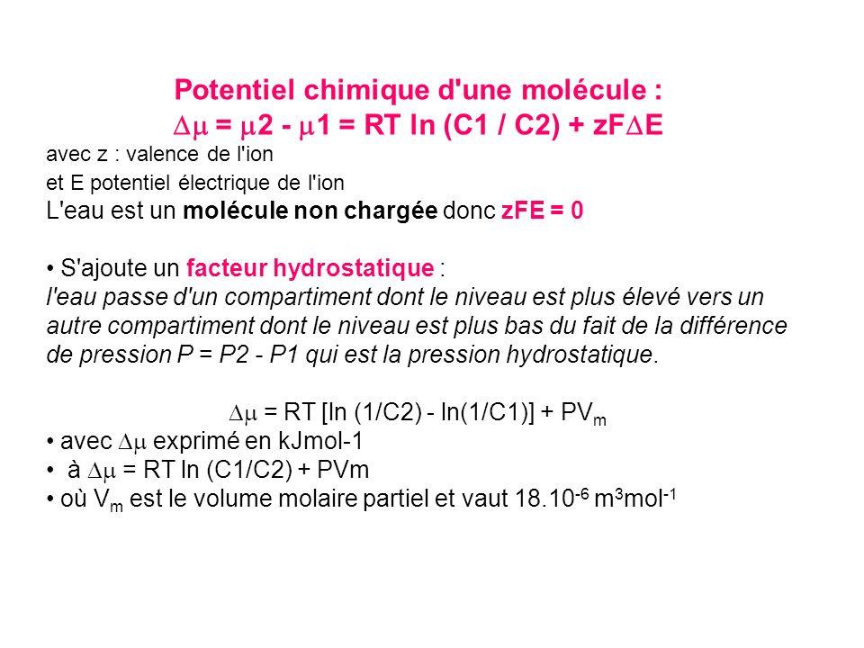 Potentiel chimique d une molécule :