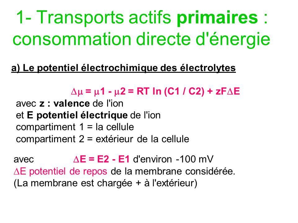1- Transports actifs primaires : consommation directe d énergie