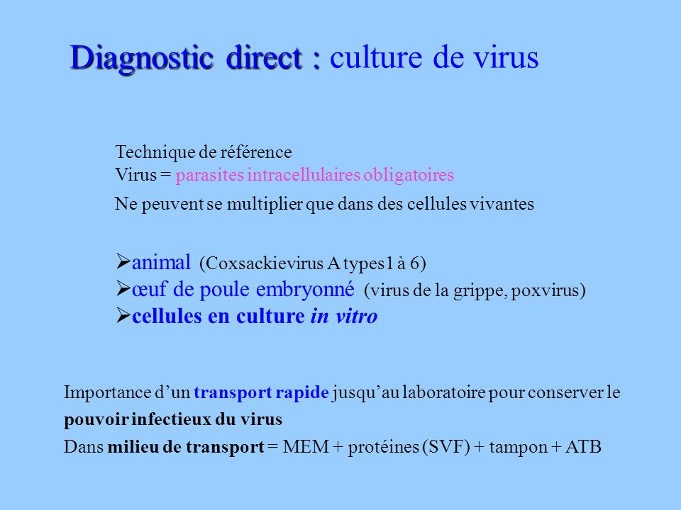 Diagnostic direct : culture de virus