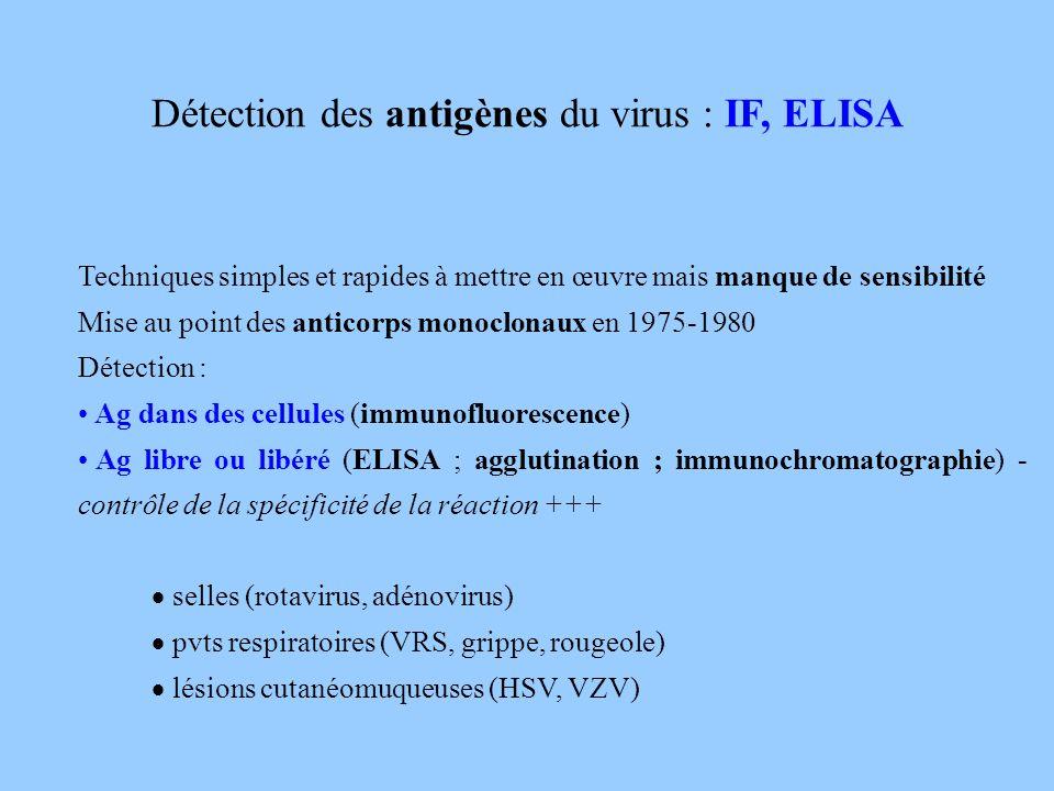 Détection des antigènes du virus : IF, ELISA