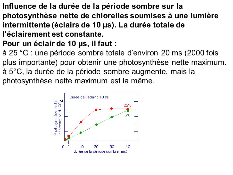 Influence de la durée de la période sombre sur la photosynthèse nette de chlorelles soumises à une lumière intermittente (éclairs de 10 µs). La durée totale de l éclairement est constante. Pour un éclair de 10 µs, il faut :