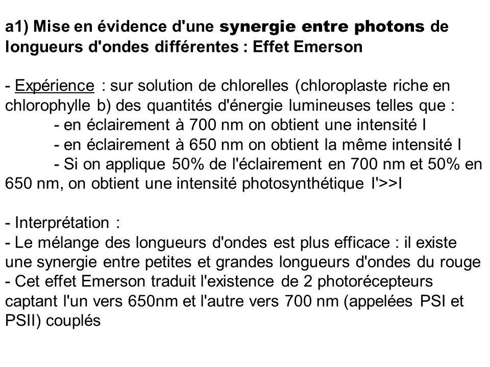 a1) Mise en évidence d une synergie entre photons de longueurs d ondes différentes : Effet Emerson