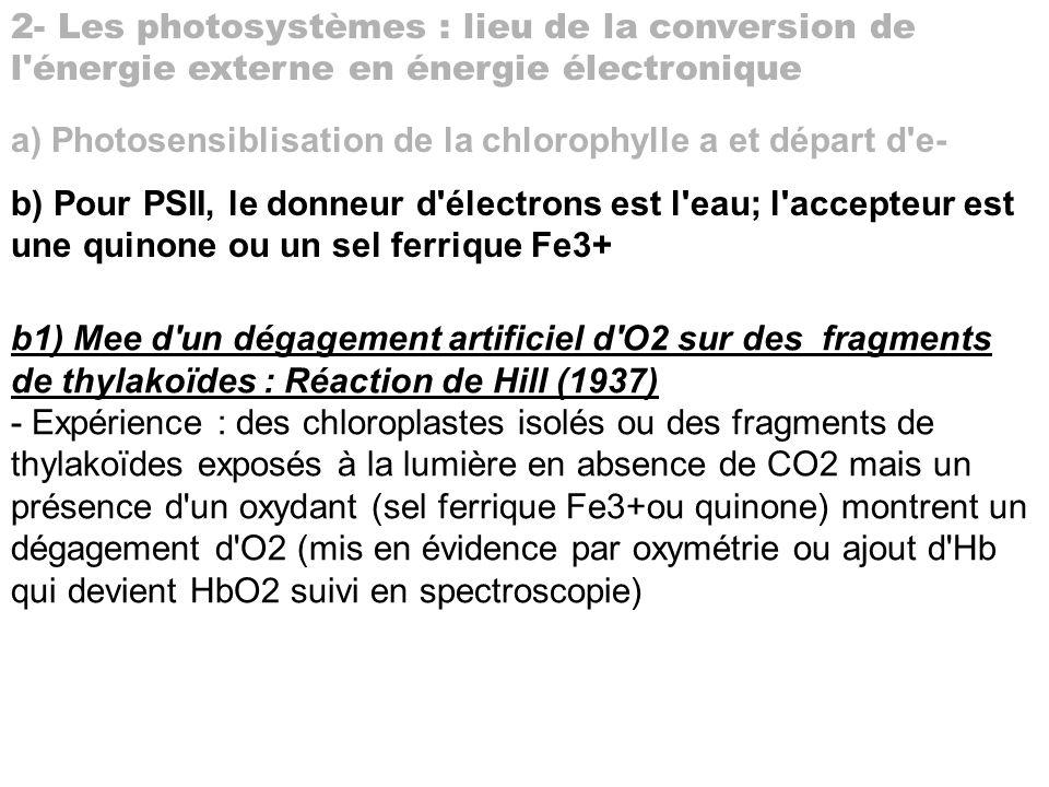 2- Les photosystèmes : lieu de la conversion de l énergie externe en énergie électronique