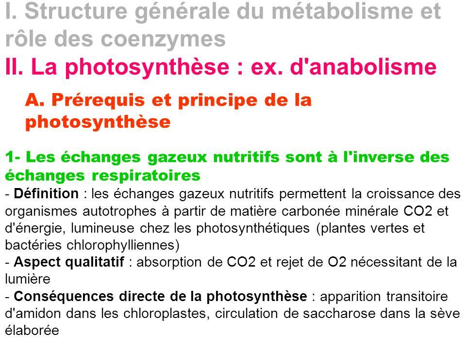 I. Structure générale du métabolisme et rôle des coenzymes II