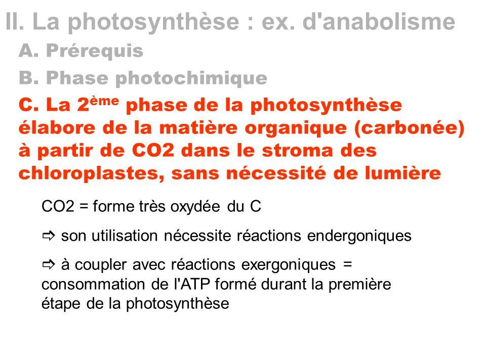 II. La photosynthèse : ex. d anabolisme