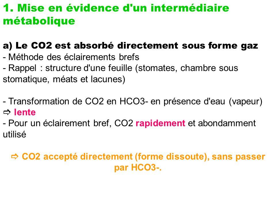  CO2 accepté directement (forme dissoute), sans passer par HCO3-.