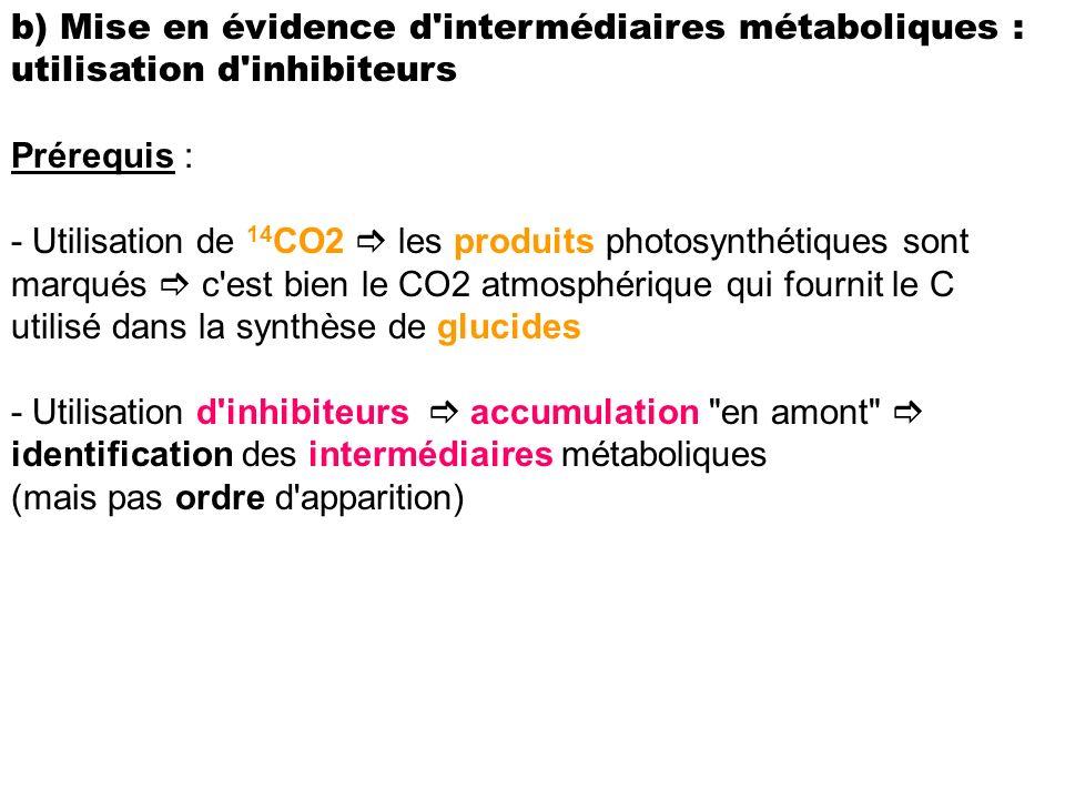 b) Mise en évidence d intermédiaires métaboliques : utilisation d inhibiteurs