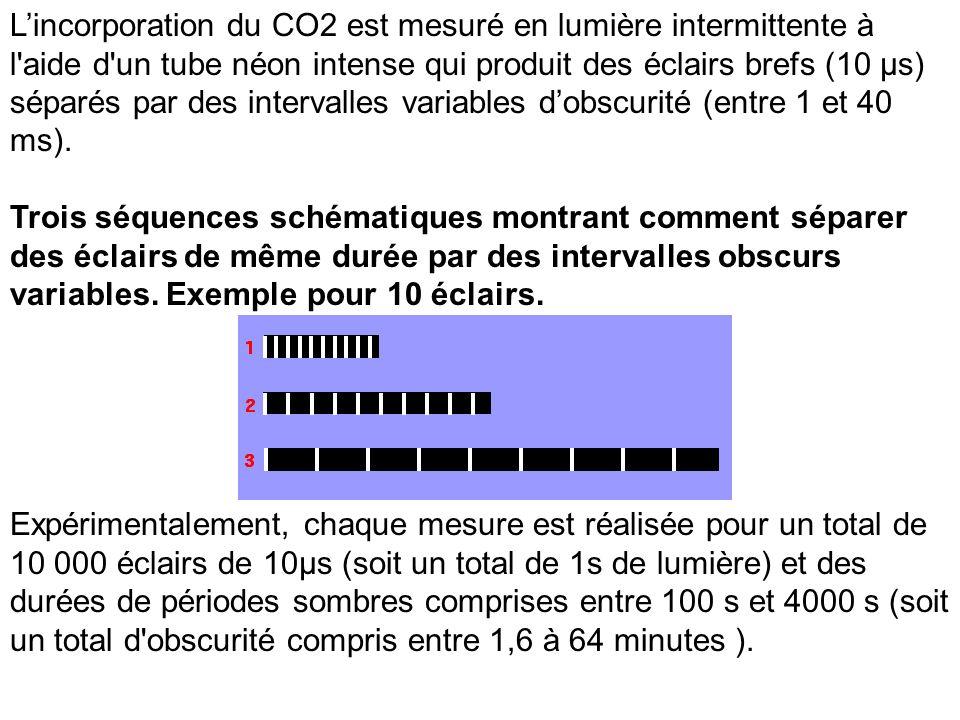 L'incorporation du CO2 est mesuré en lumière intermittente à l aide d un tube néon intense qui produit des éclairs brefs (10 µs) séparés par des intervalles variables d'obscurité (entre 1 et 40 ms).