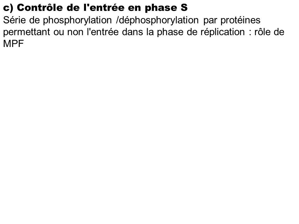 c) Contrôle de l entrée en phase S