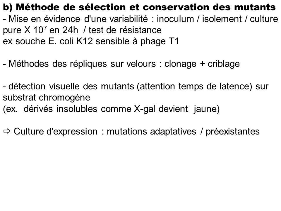 b) Méthode de sélection et conservation des mutants