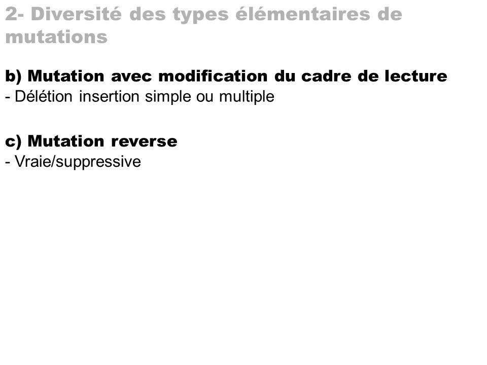 2- Diversité des types élémentaires de mutations