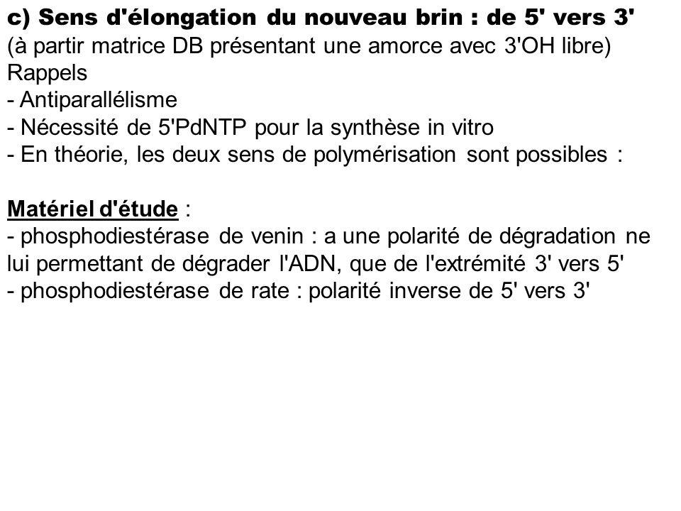 c) Sens d élongation du nouveau brin : de 5 vers 3