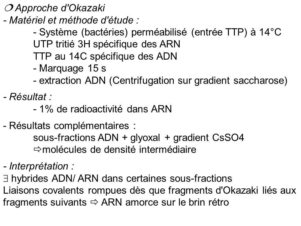  Approche d Okazaki - Matériel et méthode d étude : - Système (bactéries) perméabilisé (entrée TTP) à 14°C UTP tritié 3H spécifique des ARN.
