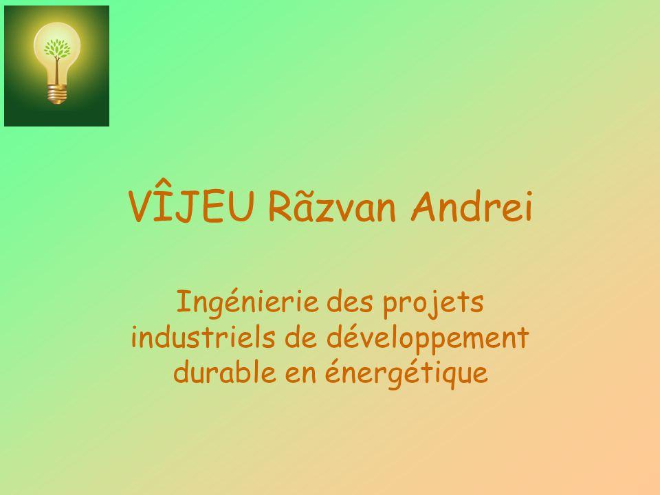 VÎJEU Rãzvan Andrei Ingénierie des projets industriels de développement durable en énergétique