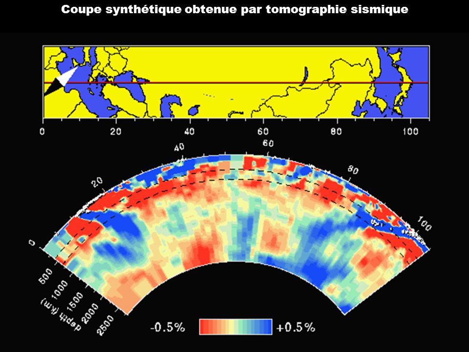 Coupe synthétique obtenue par tomographie sismique
