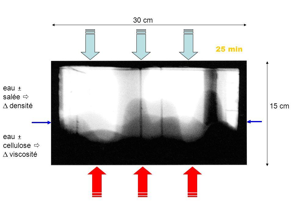 30 cm 25 min eau  salée  D densité 15 cm eau  cellulose  D viscosité