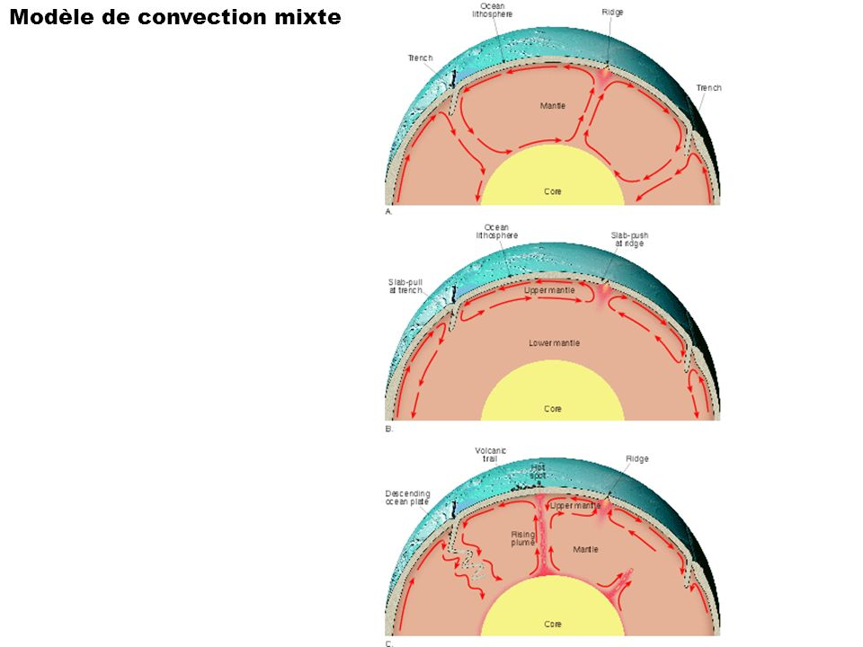 Modèle de convection mixte