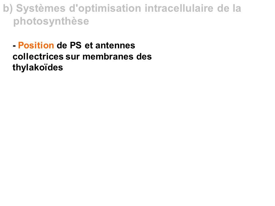 b) Systèmes d optimisation intracellulaire de la photosynthèse
