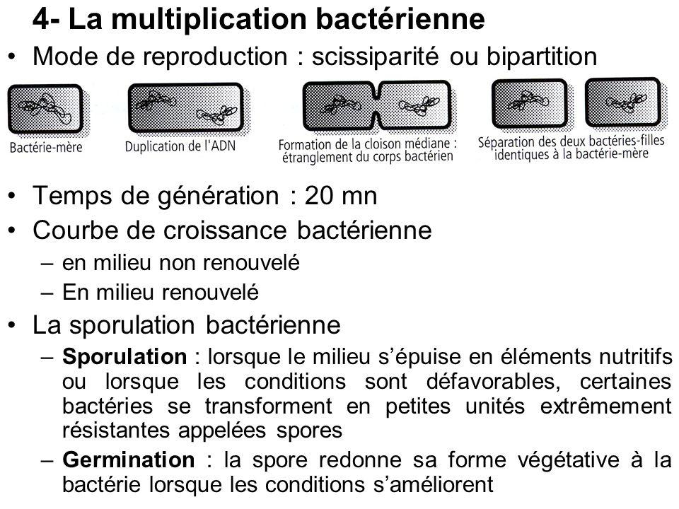 4- La multiplication bactérienne