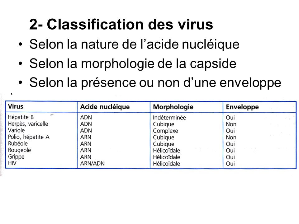 2- Classification des virus