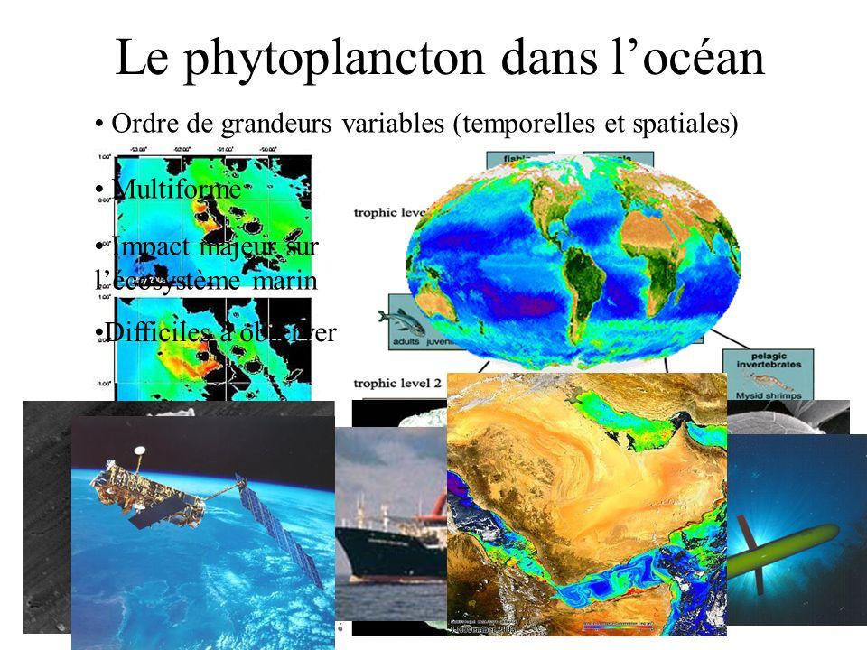 Le phytoplancton dans l'océan