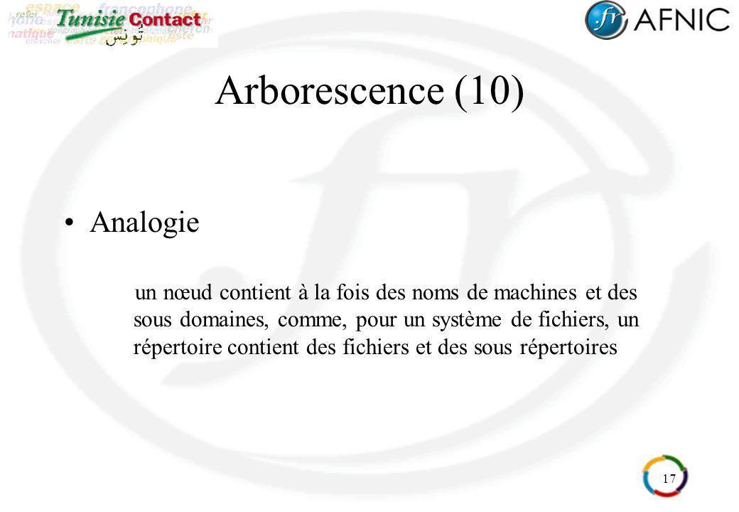 Arborescence (10) Analogie