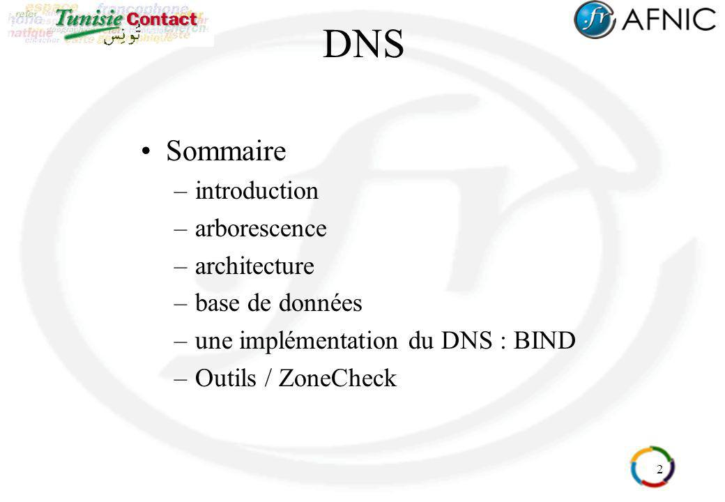 DNS Sommaire introduction arborescence architecture base de données
