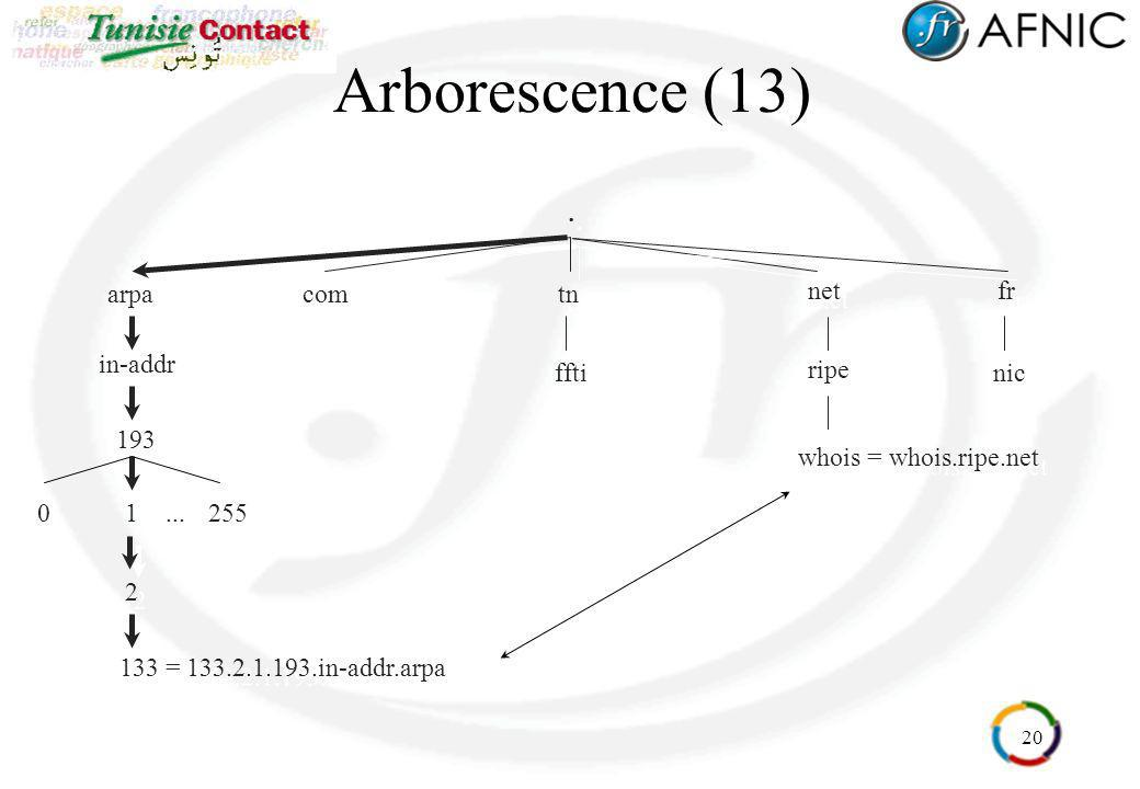 Arborescence (13) . fr net arpa ripe whois = whois.ripe.net in-addr
