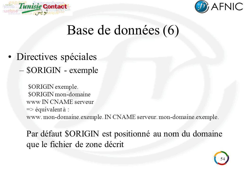 Base de données (6) Directives spéciales