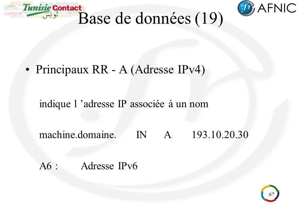 Base de données (19) Principaux RR - A (Adresse IPv4)