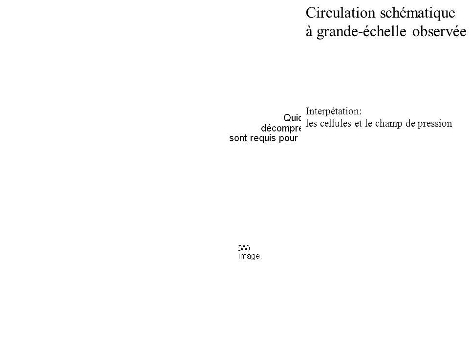 Circulation schématique à grande-échelle observée
