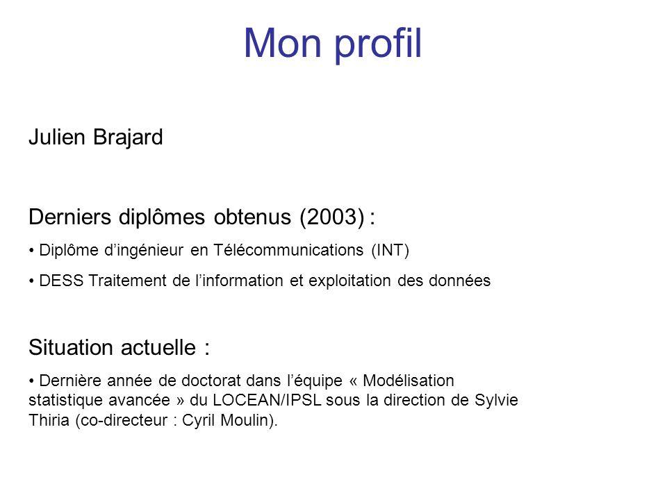 Mon profil Julien Brajard Derniers diplômes obtenus (2003) :
