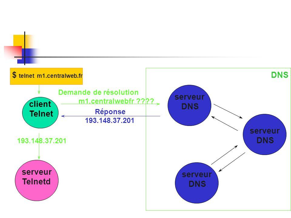 $ telnet m1.centralweb.fr