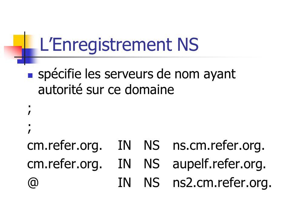 L'Enregistrement NS spécifie les serveurs de nom ayant autorité sur ce domaine. ; cm.refer.org. IN NS ns.cm.refer.org.