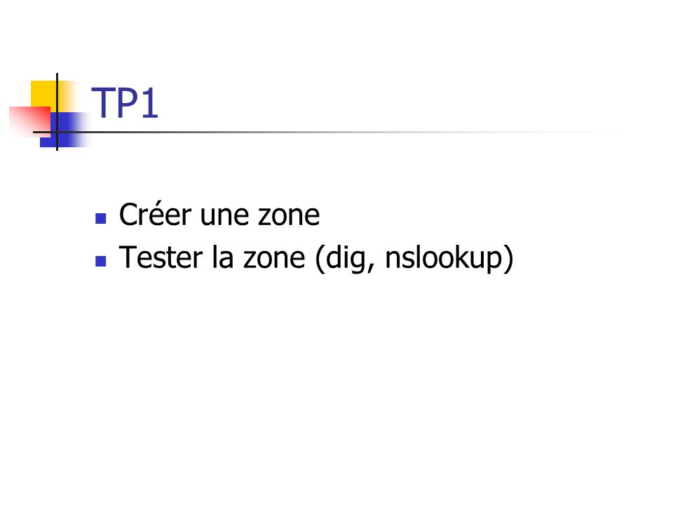TP1 Créer une zone Tester la zone (dig, nslookup)
