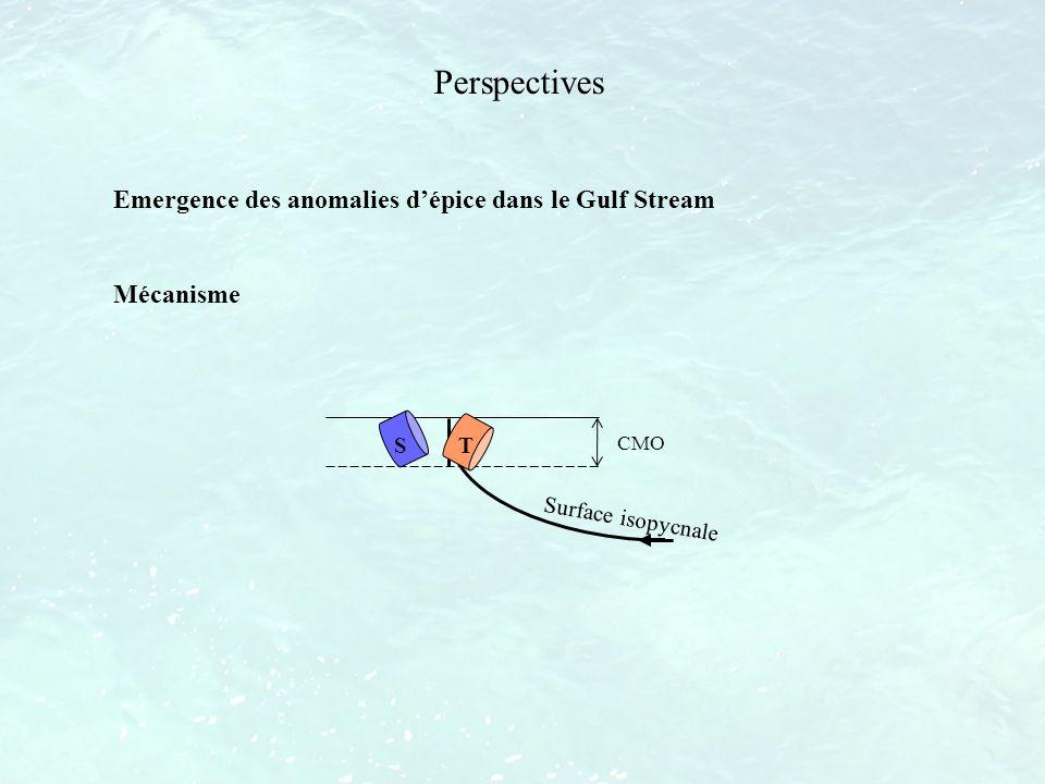 Perspectives Emergence des anomalies d'épice dans le Gulf Stream
