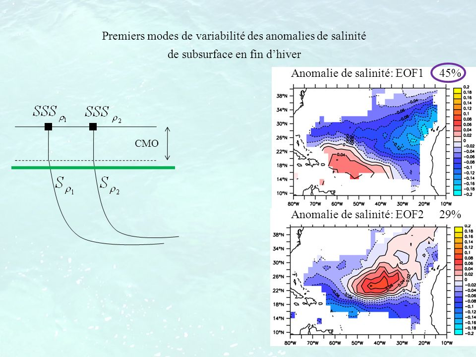 Premiers modes de variabilité des anomalies de salinité