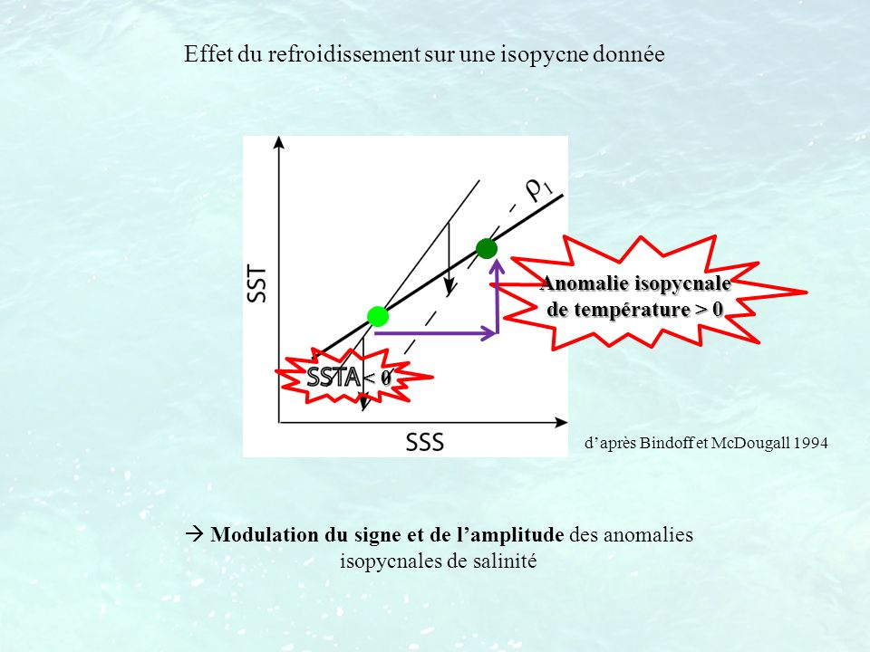 Anomalie isopycnale de température > 0