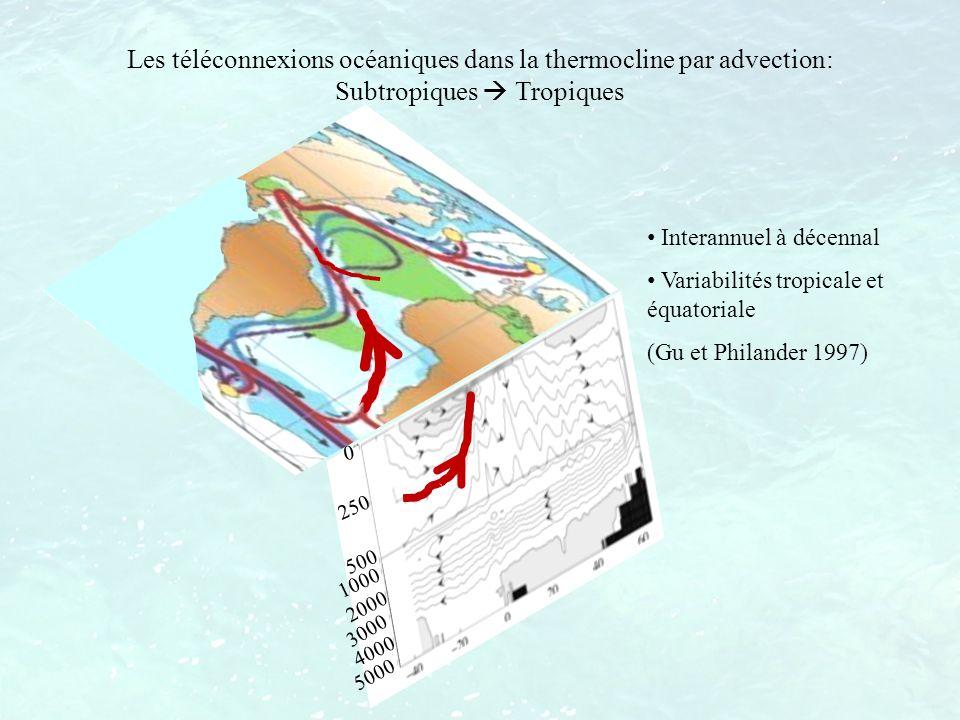 Les téléconnexions océaniques dans la thermocline par advection: Subtropiques  Tropiques