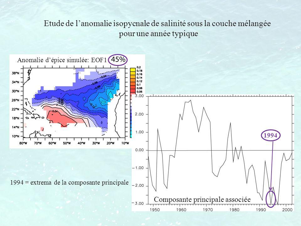 Etude de l'anomalie isopycnale de salinité sous la couche mélangée