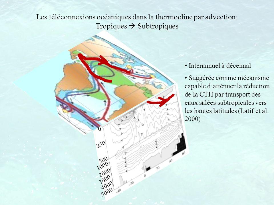 Les téléconnexions océaniques dans la thermocline par advection: Tropiques  Subtropiques