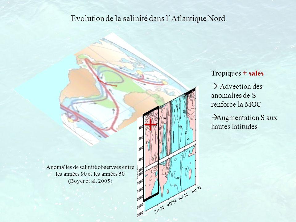 + Evolution de la salinité dans l'Atlantique Nord Tropiques + salés