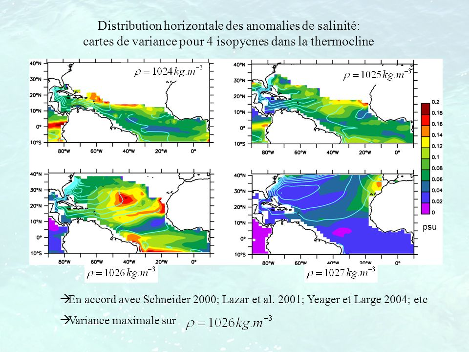 Distribution horizontale des anomalies de salinité: