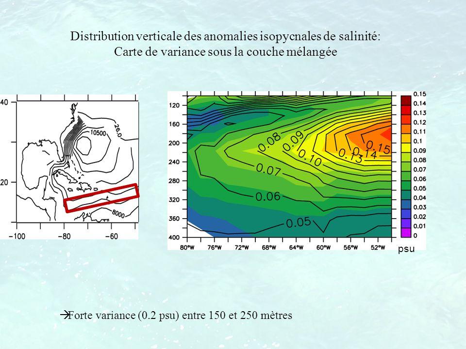psu Distribution verticale des anomalies isopycnales de salinité: