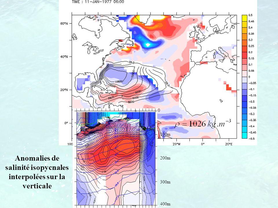 Anomalies de salinité isopycnales interpolées sur la verticale