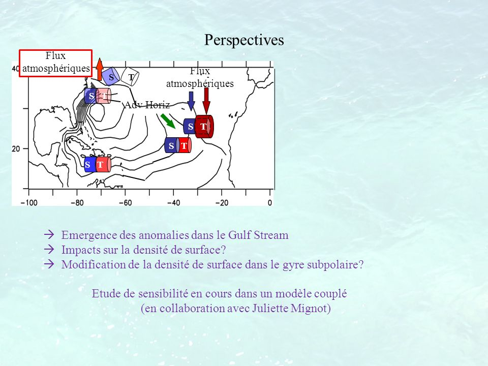 Perspectives Emergence des anomalies dans le Gulf Stream