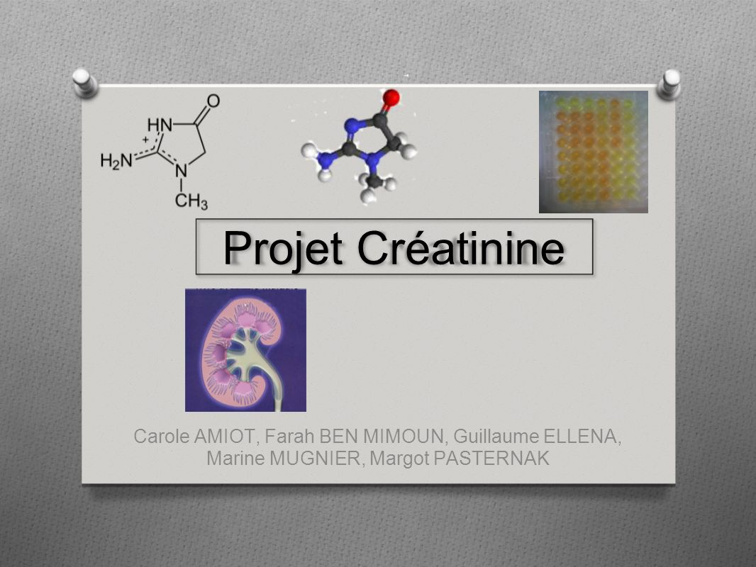 Projet CréatinineBon ça bugue sur 2-3 trucs, la faute à Gougoule, sur powerpoint c est joli.